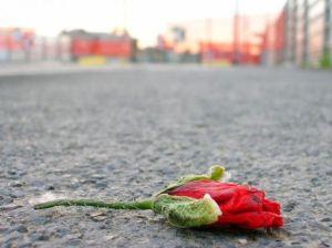 violenza-donne-denunce